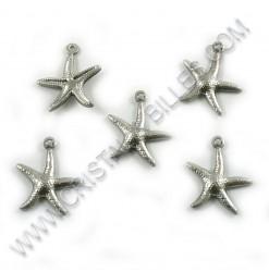 Charm starfish 16mm,...
